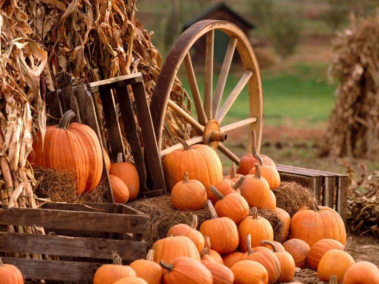 fall-harvest-pumpkin-wagon-wheel