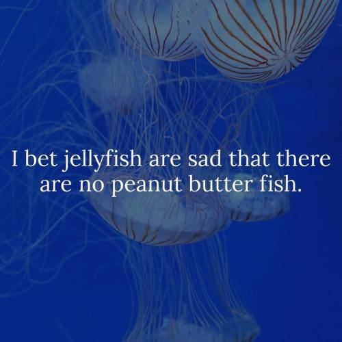 jelly-fish-peanut-butter-fish
