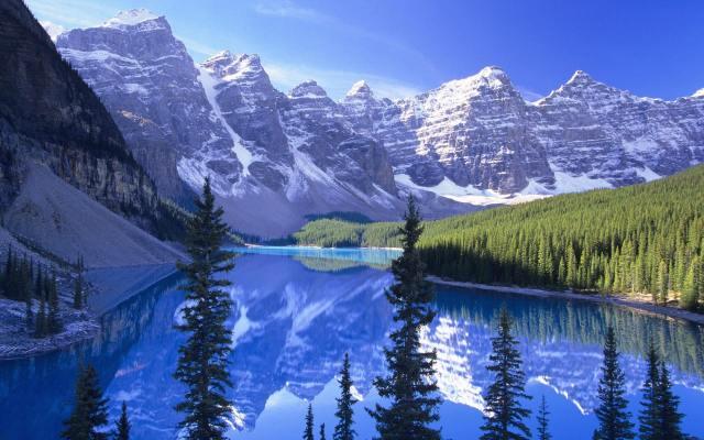 purple-mountains-majesty-stream-pine