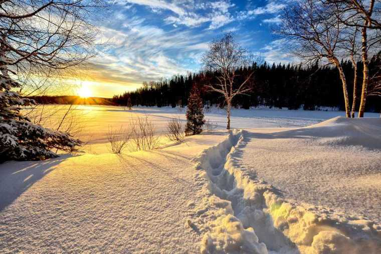 snow-field-path-winter